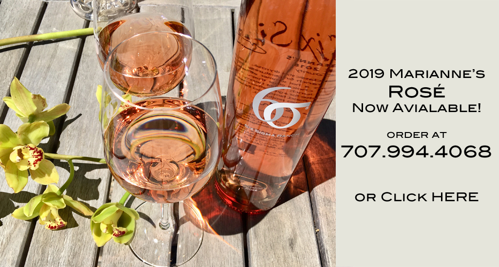 2019 Rose release SLIDE-now available copy