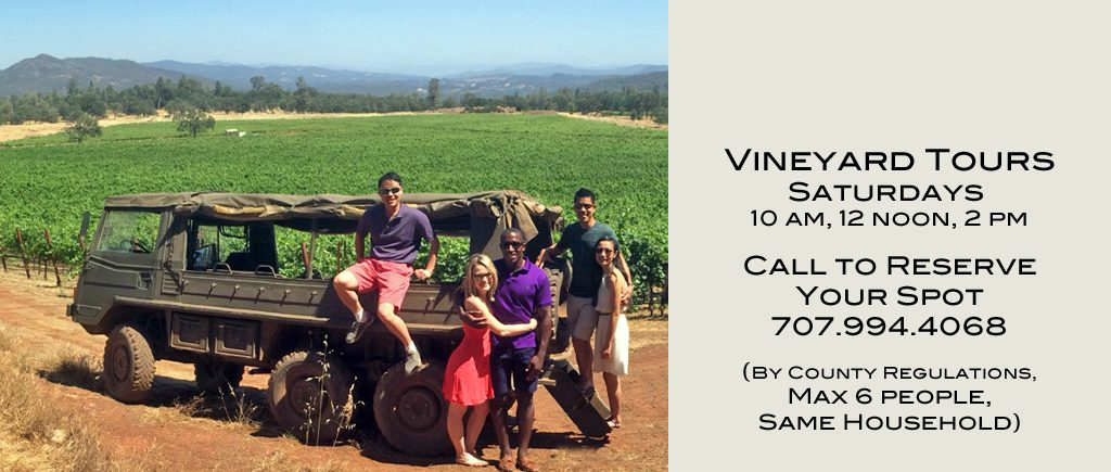 Five people on a vineyard tour at Six Sigma Ranch