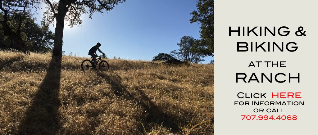 A person is biking at Six Sigma Ranch