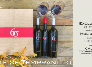taste of six sigma tempranillo copy